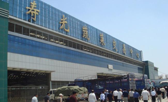 寿光飞机场迁建哪个村